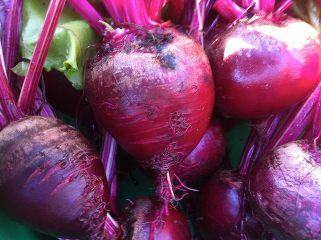 crosby-egyption-beets-032